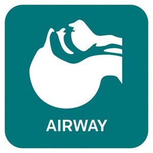 ACEP Airway CME Collection (ACEP16)