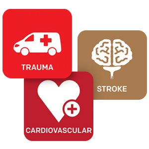 ACEP Trauma, Stroke, and Cardiovascular CME Collection, 2nd edition